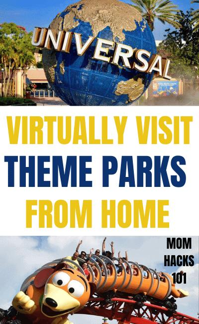 Virtual Amusement Park Rides